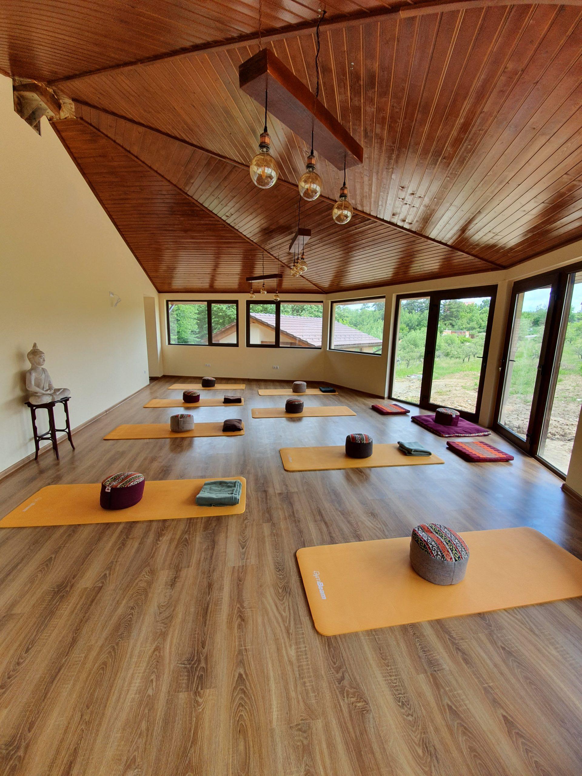 Foisor Forest Villa Detox Mindfulness